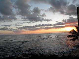 sunset:ocean:palm