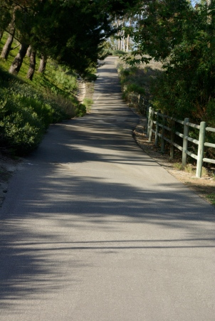 path-local